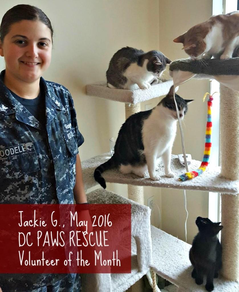 Jackie Volunteer of the Month