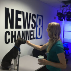 Dory is a local star on News Channel 8